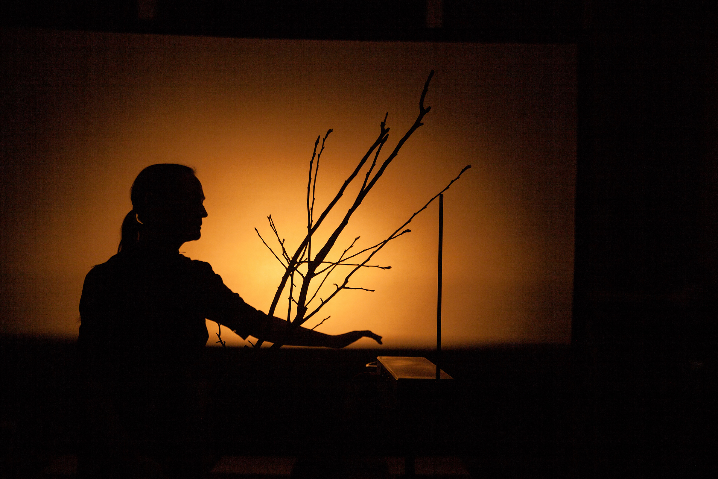 Voice of Nature: The Trial. Maria Lucia Cruz Correia. Light design vinny jones